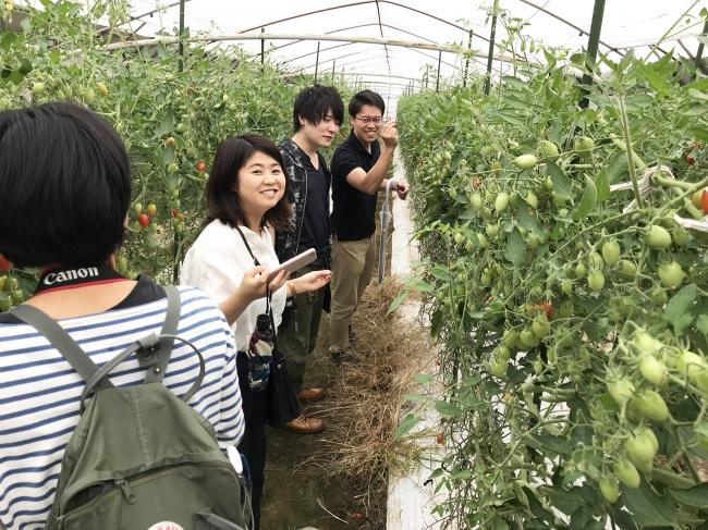 慶応SDM大学院生らは農業の現場に何度も足を運び解決策の提案につなげました。