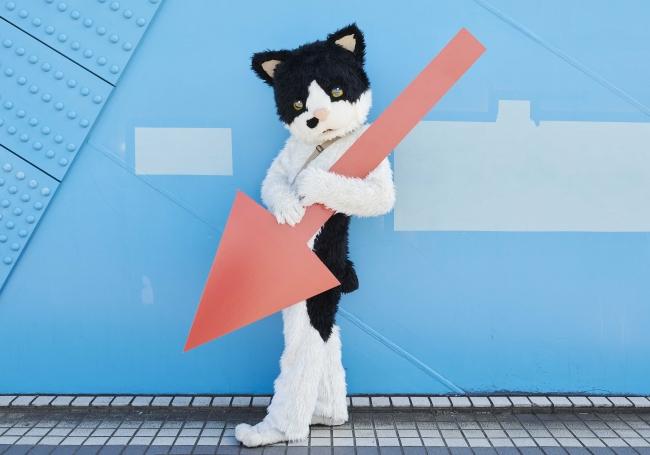 人気シンガーソングライターの「 むぎ(猫)」さん