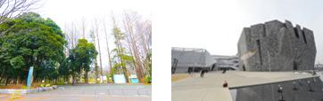 「所沢航空記念公園」ほか、自然も多い/新名所となった「ところざわサクラタウン」
