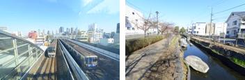 渋谷・横浜・目黒まで乗り換えなし/歩くのが楽しい「江川せせらぎ遊歩道」