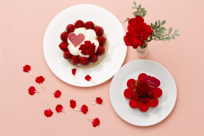 母の日ケーキ2種イメージ