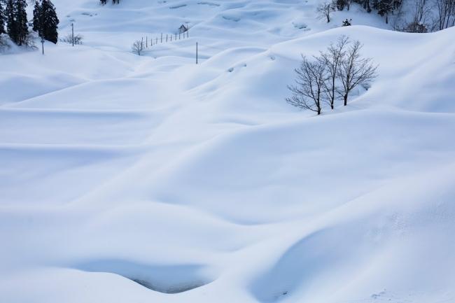 雪につつまれる新潟県