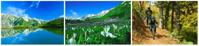 (左)八方池 (中央)栂池自然園 (右)白馬岩岳MTB PARK