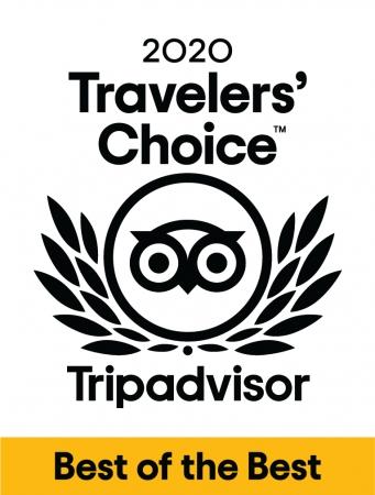 「トラベラーズチョイスアワード ベスト・オブ・ザ・ベスト」ロゴ