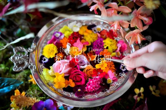 来場者は空間に散りばめられたエディブルフラワーを摘んで自分だけの花のドリンクをカスタマイズできる