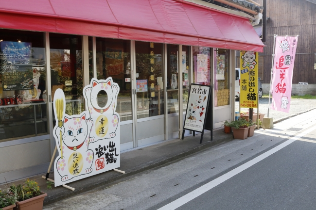 ノスタルジックな商店街を入ると見えてくる追い出し猫本舗