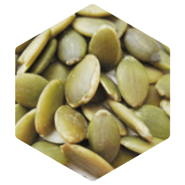 ペポカボチャ種子