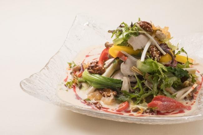 ヘルシーサラダ冷麺