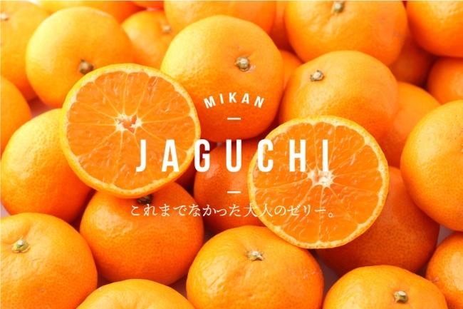 NPO法人浜の会から柑橘を使ったゼリー「みかんのジャグチ」が発売となりました!