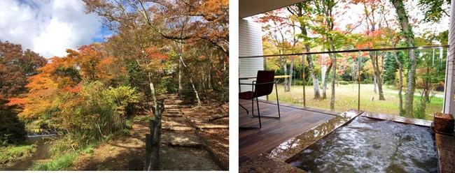 箱根ハイランドホテルの庭園散策路            温泉露天風呂付きツイン
