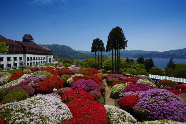 ホテルとツツジ庭園