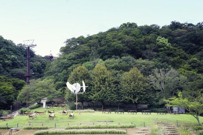 神戸を見下ろす芝生広場は最適なピクニックスポットです