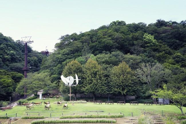 風の丘芝生広場