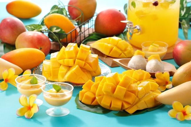 マンゴー食べ放題イメージ写真