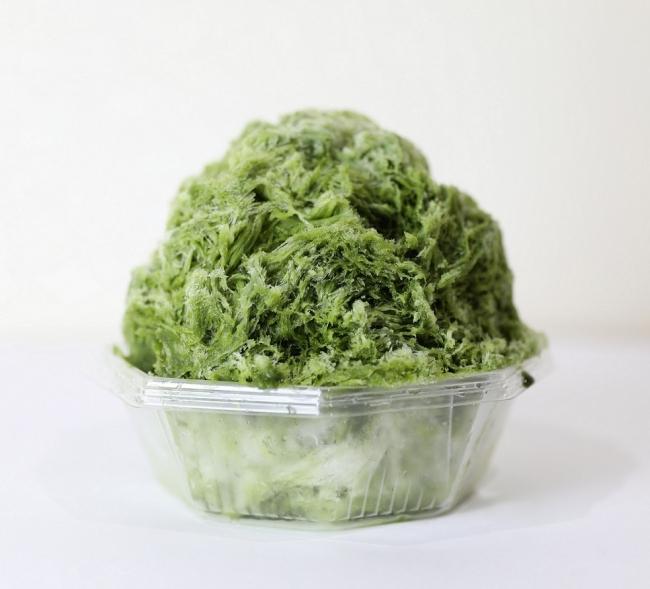 かき氷工房 雪菓/抹茶ミルク