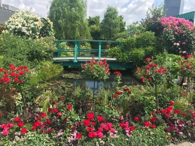 「睡蓮の庭」周辺