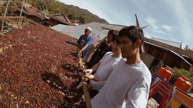 エンレカン県のカカオ農園で発酵後のカカオを乾燥させる様子