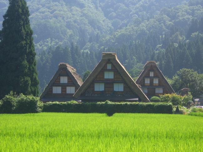 白川郷の合掌造り 写真提供:岐阜県白川村役場