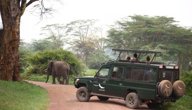 ンゴロンゴロ自然保護区のゲームドライブ (C)AndBeyond