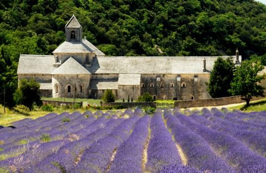 「セナンク修道院(ラベンダー開花時期)」(C)HOUQUEL Alain/CDT Vaucluse