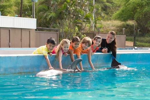 イルカと触れ合えるドルフィンアロハ 写真提供:シーライフパーク