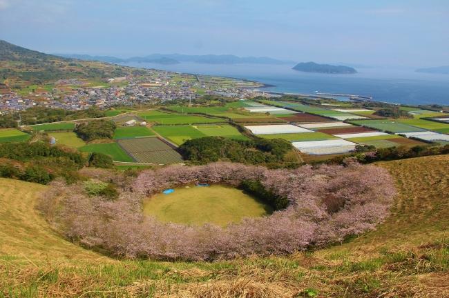 箕岳山頂から望む桜の輪