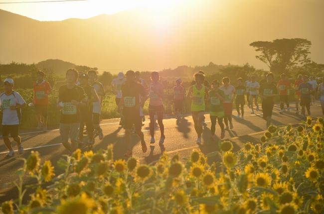 五島列島夕やけマラソン。約3,000人のランナーが出走。長崎県五島市における夏の一大イベント。