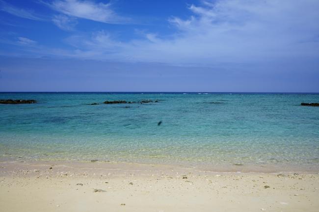 海亀がやってくる宿の前の海