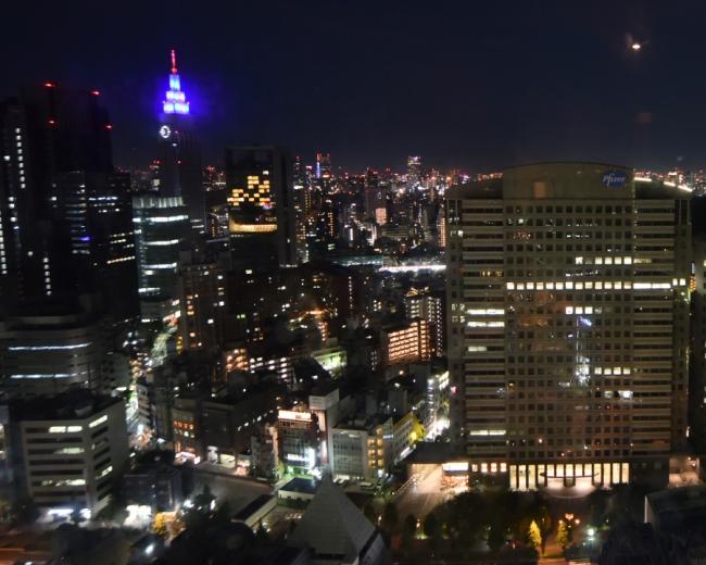 29階からの夜景を見ながら