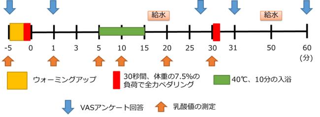 図1.コンディショニング試験のタイムスケジュール