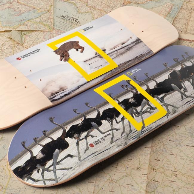 130年の歴史を持つナショナル ジオグラフィックとスケートボードブランドELEMENTによるコラボストアが代官山T-SITEに期間限定オープン!