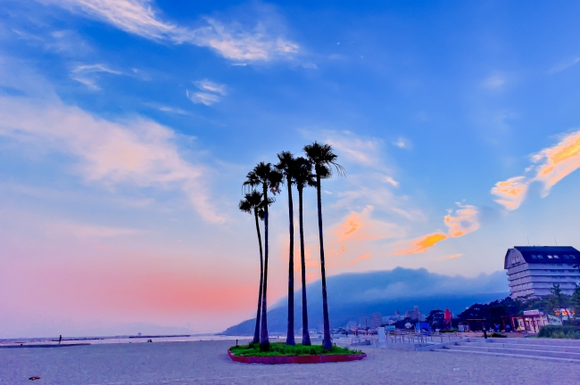 まるでアメリカ西海岸⁉️ 須磨海浜公園(神戸市須磨区)