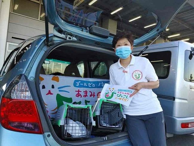 殺処分寸前の猫を引き取る斎藤獣医師