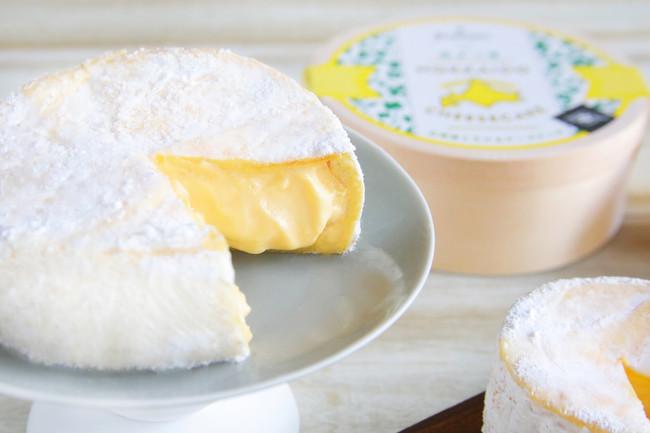 北海道とろけるチーズケーキ