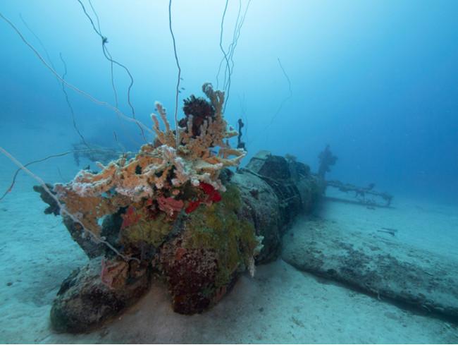 プロペラに珊瑚などの付着物が付いた『天山』ーチューク(トラック諸島)