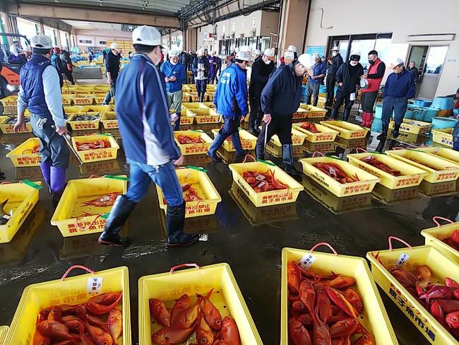 銚子漁港競りの様子