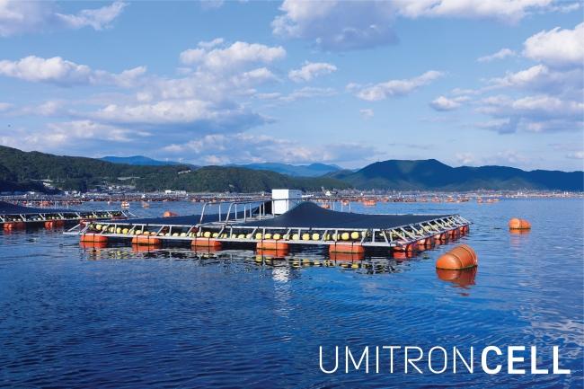 UMITRON CELL  愛媛県愛南町にて水産養殖現場への設置を開始
