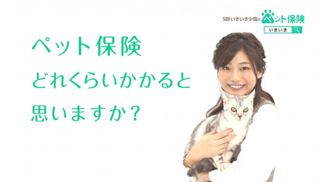 新TVCM「お手ごろな保険料」篇