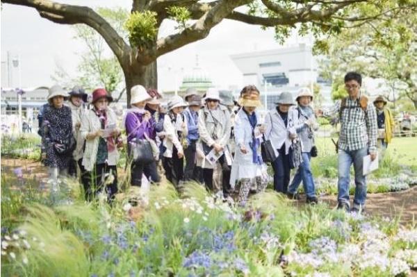 定番人気イベントの「草花散歩」