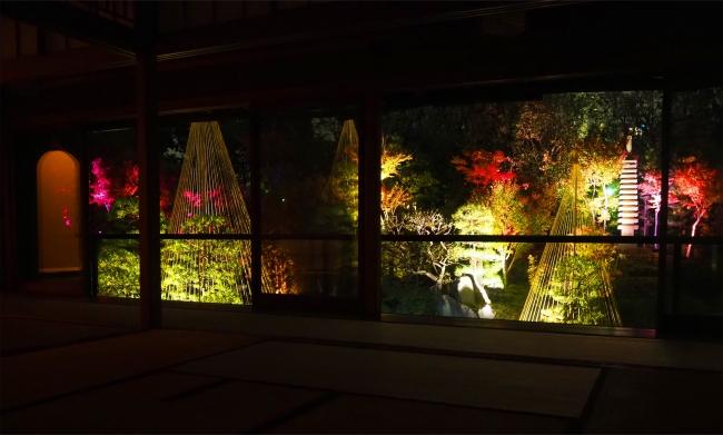 秋の庭園ライトアップ(豊島区立目白庭園)