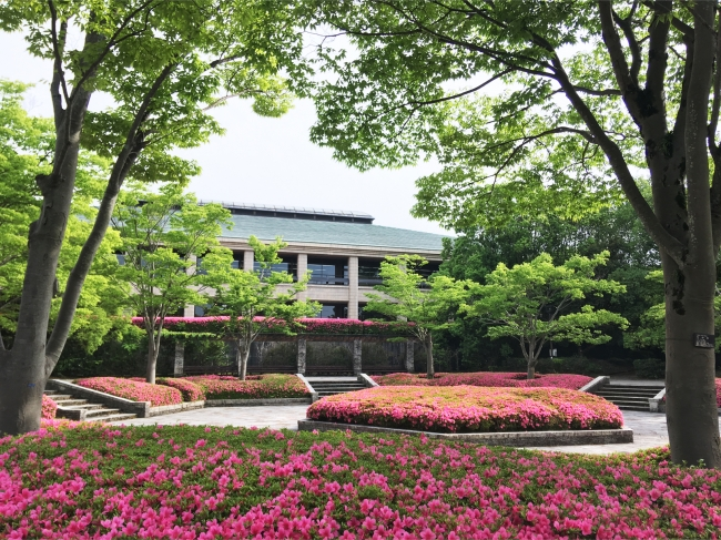 県立図書館とサツキの花(滋賀県営都市公園びわこ文化公園)