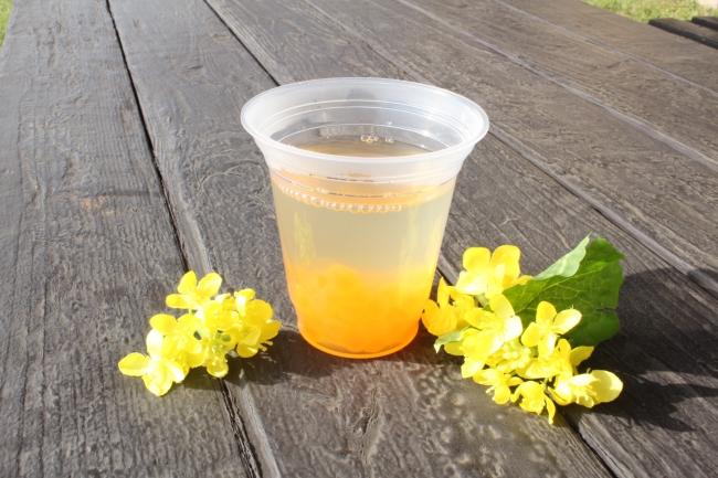 菜の花畑のはちみつレモン
