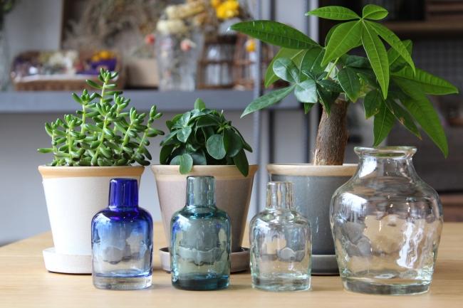 グリーン各種、ガーデン小物・こだわり花器