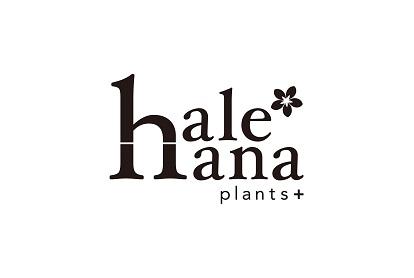 hale-hana plants+(ハレハナ プランツプラス)