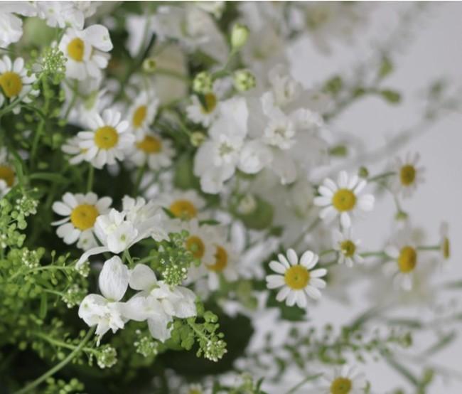 心を癒す香りの、季節のハーブを使用します。