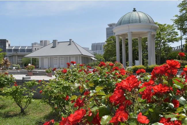 「よこすか近代遺産ミュージアム ティボディエ邸」とバラ園