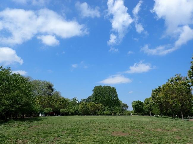 園内最大でチョウやトンボ、バッタなどが見られる原っぱ広場