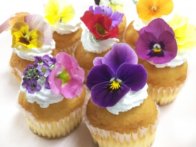 横山園芸のエディブルフラワーを使用したカップケーキ(利用イメージ)