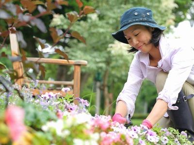 NHK・Eテレ趣味の園芸で活躍する永江晴子先生
