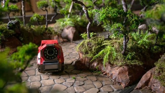 ▲探索ロボでジャングルを冒険!